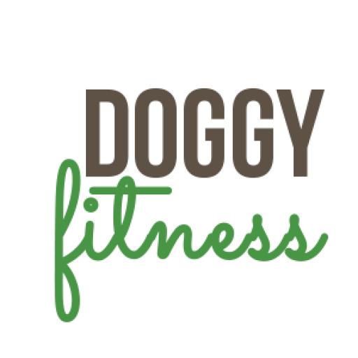 Doggy Fitness Online Kurse